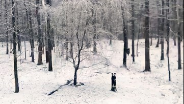 Winter wonderland arrives to this backyard