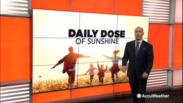 Daily dose of sunshine: Dealing with children isolated at home