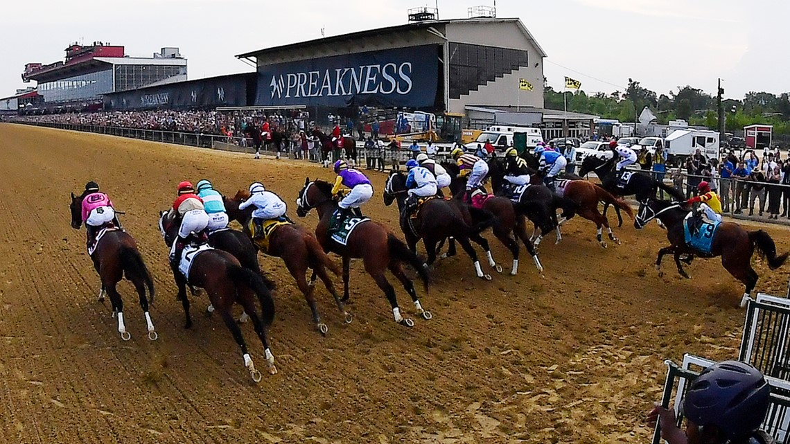 How to bet on the preakness on friday may 18 fxglory binary options review
