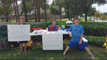 Pearland boys' lemonade stand raises over $800 for Harvey victims