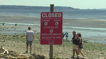 Washington state investigating 3 million-gallon sewage spill that closed Puget Sound beaches