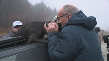 'You made my week, my year, my life' | Dog who ran from deadly St. Charles crash reunites with owner