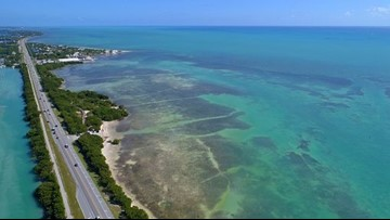 Maryland man dies while scuba diving in Florida Keys
