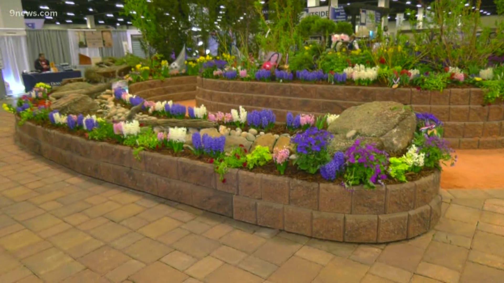 Colorado Garden Home Show 2020 Opens Feb 22 Wusa9 Com