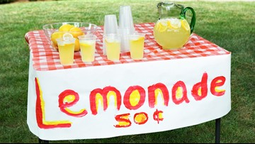 Texas House approves bill legalizing lemonade stands