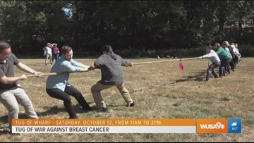 The National Cancer Society is fighting breast cancer with tug of war contest