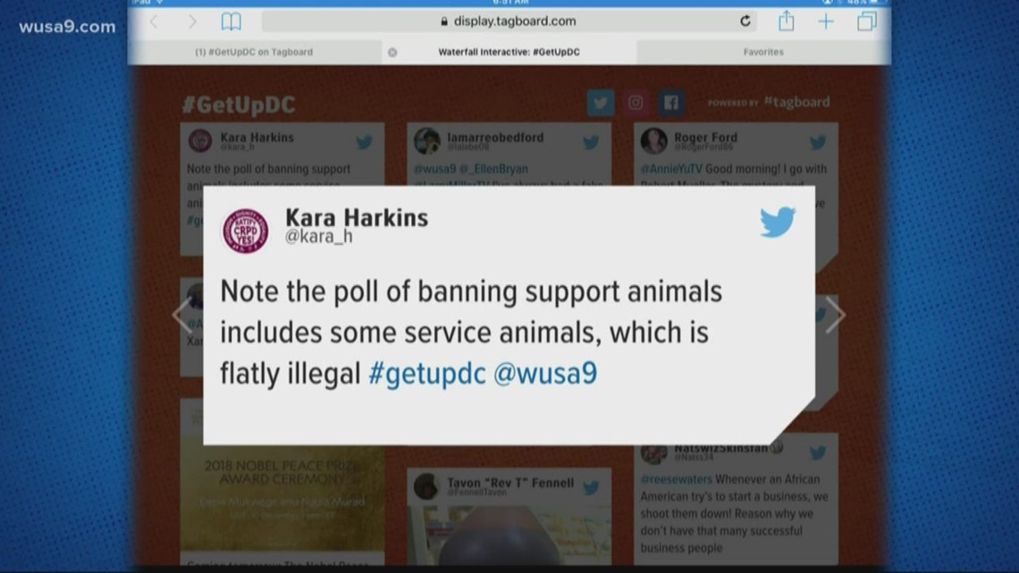 Viewers don't agree with Delta for banning support animals