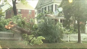 Tree falls on house in Bethesda