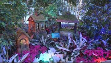 Sneak peak at the 2019 National Botanic Gardens 'Season's Greenings' exhibit