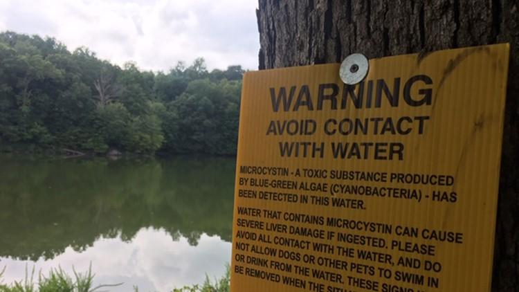 toxic blue-green algae known as cyanobacteria WARNING SIGN