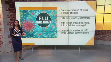 How weather impacts the flu
