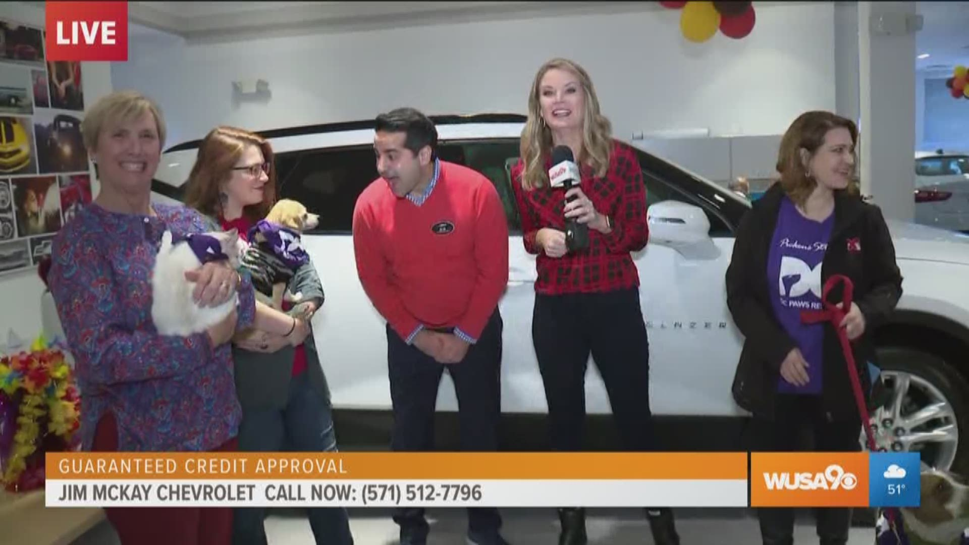 Buy Your Dream Car And Save An Animal At Jim Mckay Chevrolet Wusa9 Com