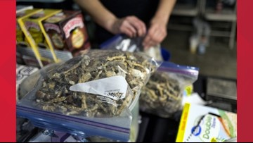 Wise: It's premature for DC to treat Psilocybin as harmless and medicinally helpful as marijuana
