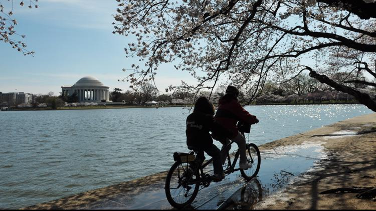 'Biggest celebration of bicycling' | Saturday DC Bike Ride event brings riders from far and wide