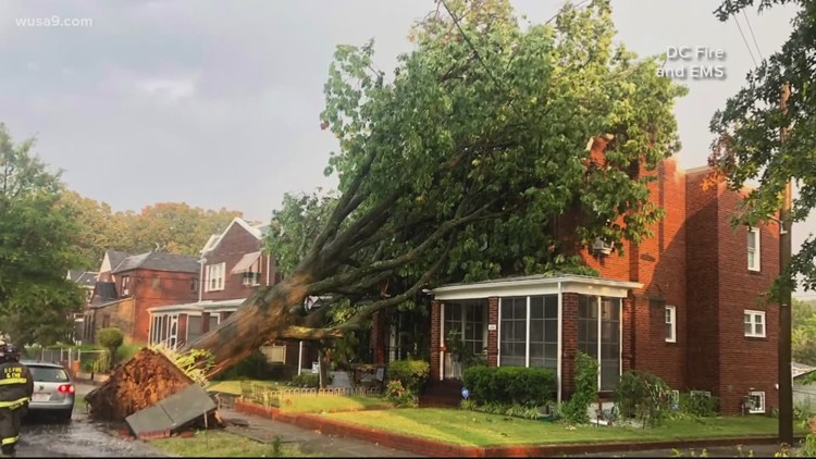 Aftermath of severe thunderstorm in DC area; family displaced