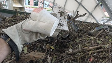 1,028,000 Styrofoam containers counted in just one Maryland waterway
