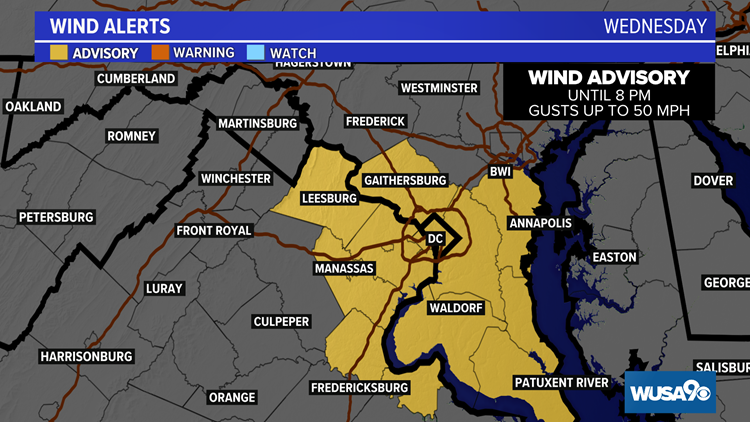 Wind Advisory issued for the DMV until 8 pm Wednesday. Here's what you can expect