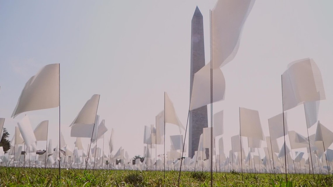 Social justice artist plants thousands of flags at National Mall for those who died of COVID