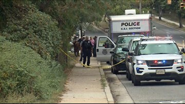 Police investigating reportedly naked body found in Alexandria creek