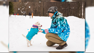 Tips to walk your dog in cold weather