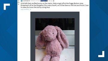 Is this your pink stuffed bunny?