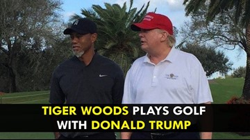 WISE: Trump equating Tiger's win at the Masters as a 'LIFE' comeback badly missed the fairway