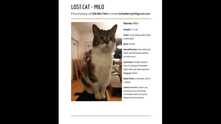 Milo Missing Poster
