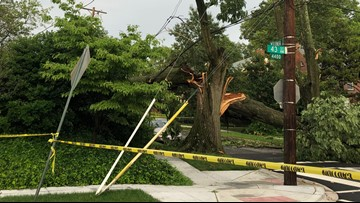 Tree crashes onto power line and home in DC