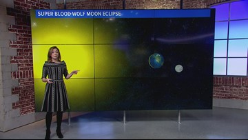 Super Blood Wolf Moon Eclipse: What it is and when to watch