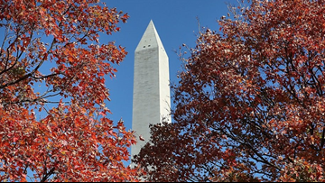 Why this fall's foliage could be dull and lackluster in DC, MD and VA