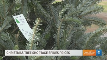 Morning Mix: Christmas tree shortage, adorable adoption celebration and more