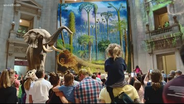 Here's how you can get into museums for free Saturday in the DMV