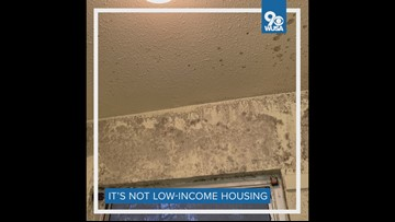 From black mold to brown bathwater, new report details privatized military housing problem