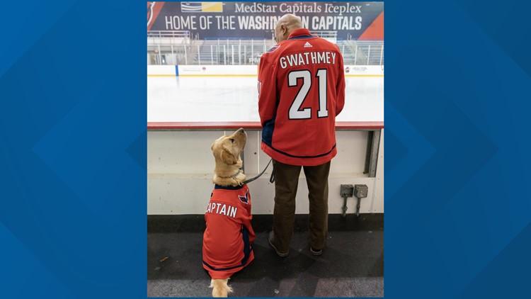 Washington Capitals service dog gets his partner