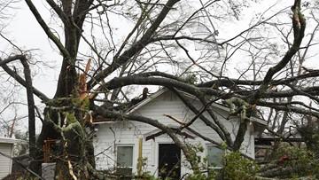 Senator: Too early to grade federal response to Hurricane Michael