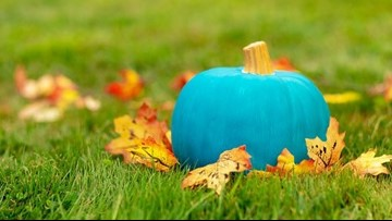 Use this 'Teal Pumpkin Map' to find food allergy safe homes for Halloween