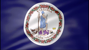 What's on Virginia's ballot? Check our voter guide