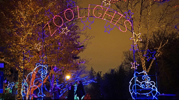 The 7 most Instagram-worthy holiday light shows in the DC area