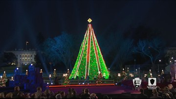 'A national tradition' | History of the National Christmas Tree