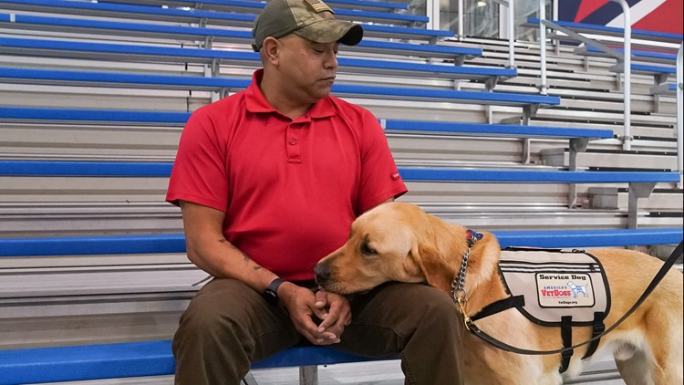 A greater purpose: Capitals former team dog finds forever home with retired Maryland Marine