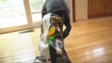 Dogs are suffocating in snack bags at alarming rates