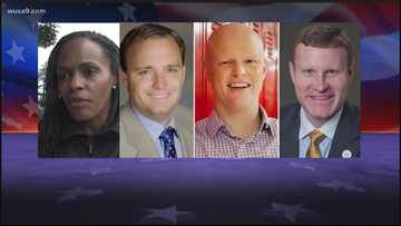 Virginia's Primary Day elections: Here's what you need to know