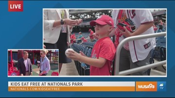 A FAN-tastic experience for the whole family at Nats Park