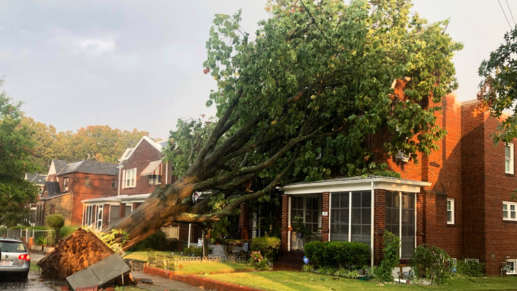 Severe thunderstorm hits DC area