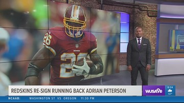 Running back Adrian Peterson returns to the Redskins