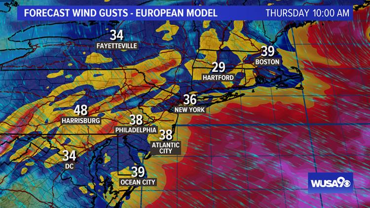 ECMWF Wind Gust Forecast