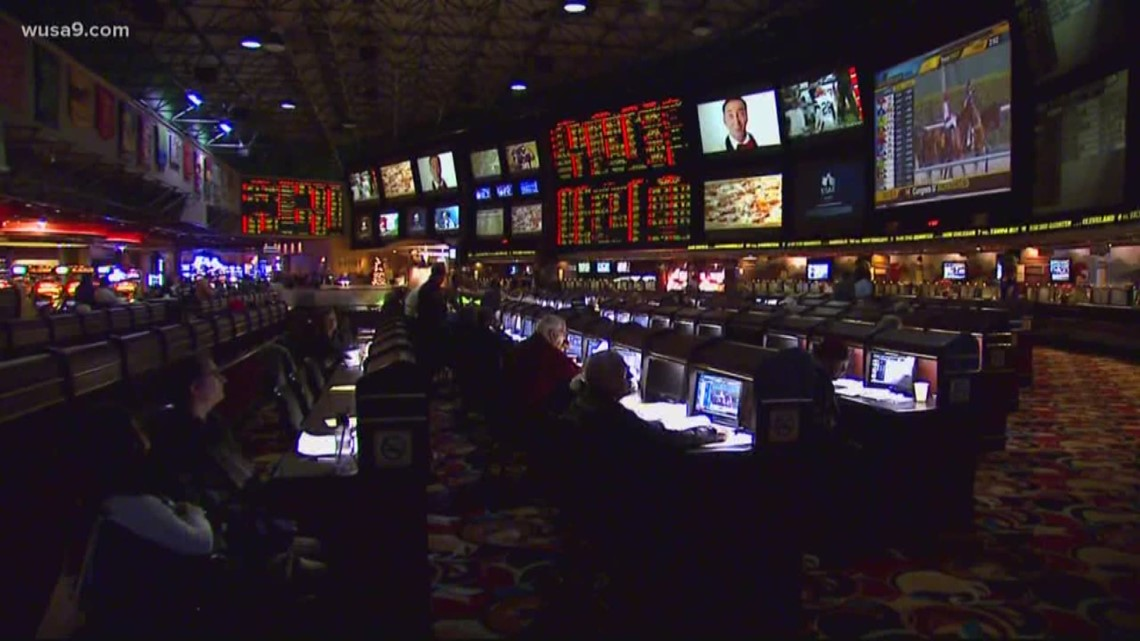 Maryland virginia sports betting change namecoins to bitcoins for sale