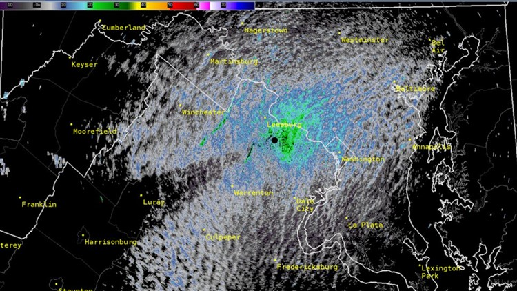 Cicadas may be showing up on weather radar | It's A DC Thing