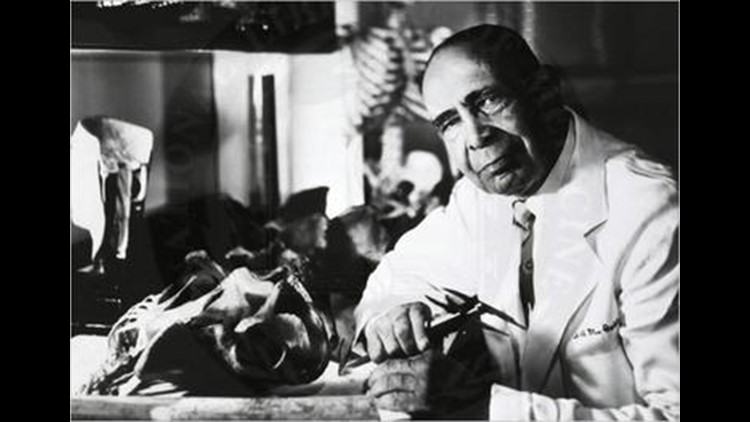 Dr Cobb