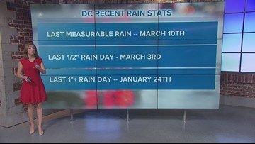 Thursday will be DC's wettest day in 2 months